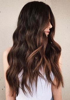 Amazing Soft Sunkissed Balayage Hair Colors for Women 2021 | Voguetypes Warm Brown Hair, Natural Brown Hair, Honey Brown Hair, Black Brown Hair, Big Black, Dark Brown, Brown Hair Color Shades, Hair Shades, Brown Hair Colors