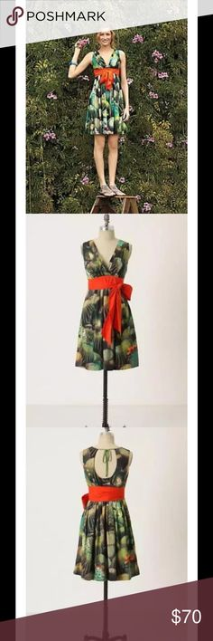 """Anthro Oroya Cactus Print Bow Dress Green Orange $188 EVA FRANCO Anthropologie Oroya Cactus Print Bow Dress Green Orange Sz 6  A photo print of the desert's finest cacti covers this silky A-line frock from Eva Franco, complete with a succulent orange sash. Side zip Cotton; polyester lining Dry clean Lined   Perfect for that tropical vacation or wear it at home and you can pretend you're on vacation.   Measurements are approximate and taken while the item was lying flat:  Waist – 15.5""""…"""
