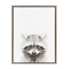 DesignOvation Sylvie Raccoon Black and White Portrait Framed Canvas Wall Art by Simon Te Tai