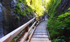 Garden Bridge, Hiking, Outdoor Structures, Travelling, Bucket, Humor, Tips, Walks, Humour
