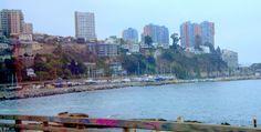 https://flic.kr/p/T1zhmB | DSC_0066.NEF | Vina del mar ,Chile.