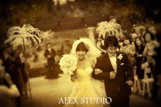 ALEX STUDIO PHOTOGRAPHY AND CINEMATOGRAPHY Maternity, Newborn, Head shot, Fashion portfolio Destination Wedding- Worldwide Travel Please contact us at 425.883.6800 Wedding at Rock Creek Gardens, outdoor wedding