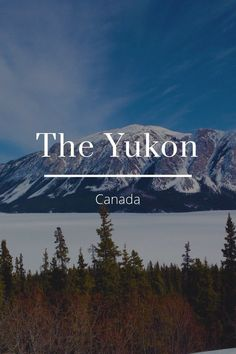 Check out my story on Steller Places Around The World, Oh The Places You'll Go, Places To Travel, Places To Visit, Around The Worlds, Alaska, Wonderful Places, Beautiful Places, Yukon Canada
