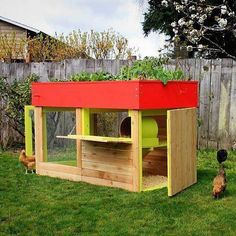 Green-roofed chicken coop. Great idea!