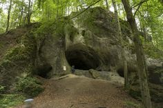Das große Hasenloch, eine 31 Meter lange Höhle bei Pottenstein Stone Art, Places To See, Beautiful Places, Germany, Country Roads, Aktiv, Plants, Travel, Trips