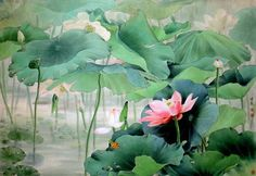 Born in Zou Chuan'an is a native of Xinhua county, Hunan province. Zou was fond of painting when he was young. Lotus Kunst, Lotus Art, Watercolor Landscape, Watercolor Flowers, Watercolor Art, Lotus Painting, China Art, Traditional Paintings, Chinese Painting