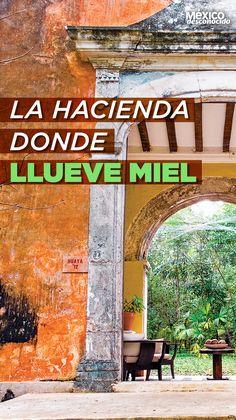 What A Wonderful World, Wonderful Places, Beautiful Places, Mexico Vacation, Mexico Travel, Places To Travel, Travel Destinations, Places To Visit, Travel Around The World