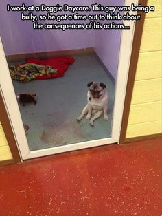 Funny Pictures Of The Day – 112 Pics