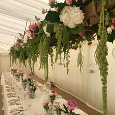The 34 best amaranthus images on pinterest amaranthus belle certainly a wedding to remember here for our couple supplied and created by triangle nursery ltd for more info visit our wholesale flower website mightylinksfo