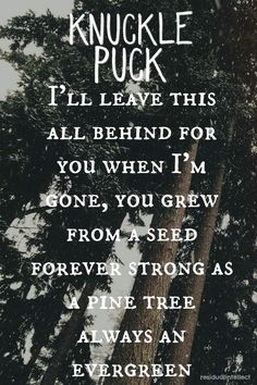 Knuckle Puck // Evergreen Made by Lyndsay ❣
