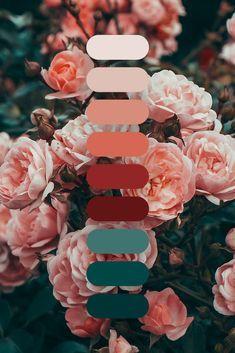 Color Schemes Colour Palettes, Colour Pallette, Color Trends, Color Combos, Orange Color Schemes, Decoration Palette, Rose Background, Aesthetic Colors, Colour Board