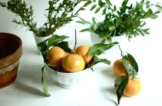 My ideal centerpiece: lemons, white or wooden bowls, herbs, olive branches.