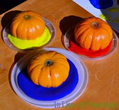 Painting WITH Pumpkins! {In Lieu of Preschool} looks fun! Preschool Arts And Crafts, Fall Preschool, Fall Crafts For Kids, Classroom Crafts, Classroom Fun, Preschool Ideas, Halloween Activities, Autumn Activities, Preschool Halloween
