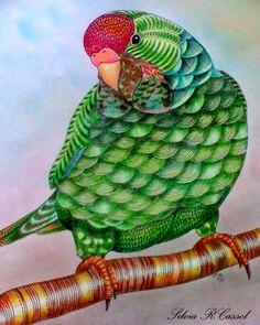 ARTES DA YLA*Do livro Reino Animal de Millie Marotta #milliemarotta #animalkingdom #adultcoloring