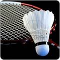 Badminton Products.