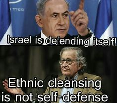 Stop claiming that Israel is defending itself.we all know that Netanyahu & the rest of the zionists want to wipe out Palestine & Palestinians Gong Li, Zhang Ziyi, Michelle Yeoh, Geisha, Israel Palestine, Noam Chomsky, Apartheid, Self Defense, Oppression