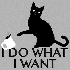 I Do What I Want Cat T Shirt. Oh my, the look on that cats face is like the knowledge of all the millenia that cats have evolved into basically becoming the masters of humans. A bit of disdain. A dash of pity. And a boatload of challenge.  When the cat starts swatting coffee off the table you know you're in trouble. That cat is about to lose it. Like really lose it. Like speak in your ear ...   #cats #snorgtees