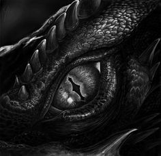 Screenshot study from The Hobbit - The Desolation of Smaug. Badass Drawings, 3d Drawings, Dragon Tattoos For Men, Tattoos For Guys, Fantasy Creatures, Mythical Creatures, Dragon Eye Drawing, Smaug Dragon, Beautiful Dragon