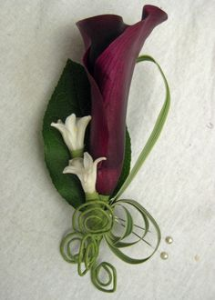 Wanted them for my wedding bouquet; this boutonniere is exactly what I was wanting. This floral designer recommends mini calla lilies for boutonnieres bc they hold up well! Boutonnieres, Calla Lily Boutonniere, Wedding Boutonniere, Prom Flowers, Wedding Flowers, Flower Bouquets, White Flowers, Purple Calla Lilies, Gothic Wedding
