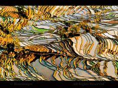 BoazImages (Flickr) via elemenop.tumblr.com.  Rice terraces, Yunnan.