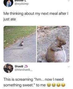 Stupid Funny Memes, Funny Relatable Memes, Funny Posts, Fuuny Memes, Funny College Memes, Funny Stuff, Funny Drunk, 9gag Funny, Funny Fails