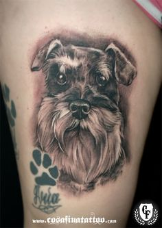 The 8 Coolest Schnauzer Tattoo Designs In The World