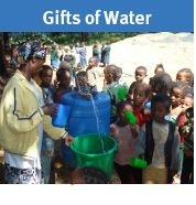 Providing a water source for a family or help build a community well.