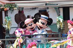 spring carnival 2014