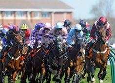 Home | Ayr Racecourse