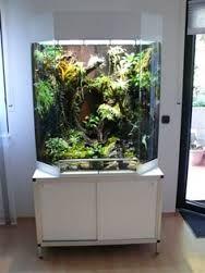 large vivarium design - Google pretraživanje & commercial glass door upright refrigerator for drinks $400~$600 ... Pezcame.Com