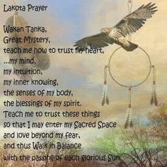I have no Native American ancestors. Yet my heart is drawn to the Lakota and I don't know why. Native American Prayers, Native American Spirituality, Native American Wisdom, Native American Tribes, American Indians, Reiki, American Indian Quotes, American Art, American Life