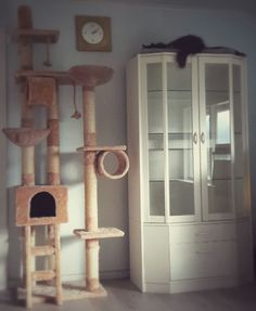 Noen katter liker høye steder. Og de bryr seg ikke om møblene er dyre eller billige, nye eller gamle. Bare legg et mykt teppe på toppen av et   skap og sett et høyt kloremøbel ved siden av. På den måten blir det en catway. Katten din vil elske det, og du blir sannsynligvis ikke nødt til å plukke opp knuste ting som blomsterpotter lenger.