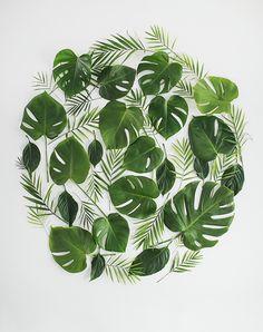 leafy backdrop