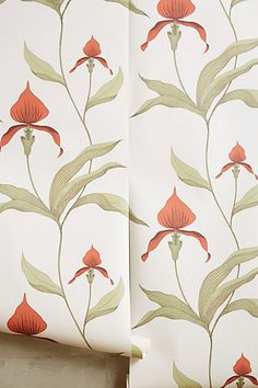 Climbing Orchid Wallpaper #anthropologie