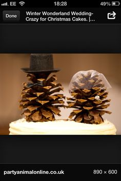 for the country setting wedding...Christmas wedding cakes