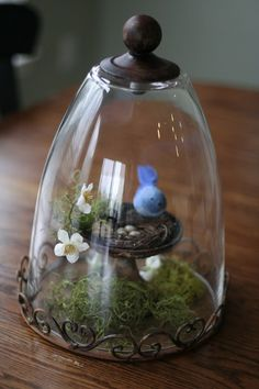 Spring decor (drinking glass w/a knob on top/bottom). Like the metal spiral base too. Cloche Decor, The Bell Jar, Bell Jars, Tiny Bird, Drinking Glass, Apothecary Jars, Glass Containers, Glass Domes, Spring Crafts