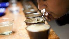 Café San Serapio: La cata de un café