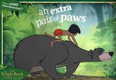 #BareNecessities: An extra pair of paws.