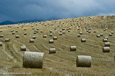 Tomáš Hulík - fields near Ruzomberok / Slovakia