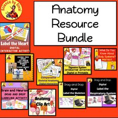 Here are 9 anatomy, body systems resources for your distance learning including clip art to add to your digital assignments! Interactive Activities, Science Resources, Science Lessons, Science Activities, Learning Resources, Science Labs, Science Ideas, Classroom Resources, Earth Science