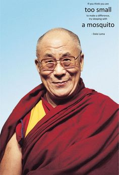 """If you think you're too small to make a difference, try sleeping with a mosquito."" Dalai Lama"