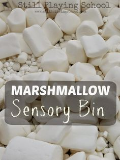The boy would absolutely love this! Marshmallow Sensory Bin: Edible Play from Still Playing School Edible Sensory Play, Sensory Tubs, Baby Sensory, Sensory Activities, Winter Activities, Infant Activities, Activities For Kids, Sensory Rooms, Activity Ideas