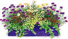 10 letných rastlín, ktoré prežiaria každý kút 4http://urobsisam.topky.sk/zahrada/okrasna-zahrada/10-letnych-rastlin-ktore-preziaria-kazdy-kut