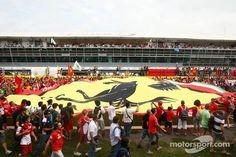 Huuuuuuuuuuuge flag (Monza 2013)