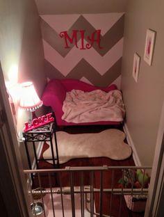 doggy bedroom