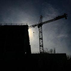 Crane sun
