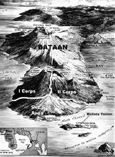 3-D map of Bataan. It gives you an appreciation of how mountainous Bataan is.