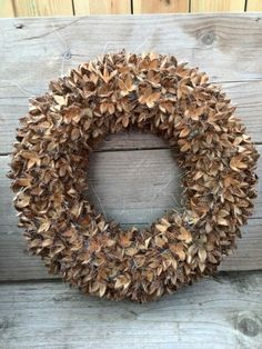 And Fall inspiration! Fall wreath of some kind of --- seed pods? Wreaths And Garlands, Autumn Wreaths, Holiday Wreaths, Door Wreaths, Christmas Decorations, Deco Nature, Nature Decor, Deco Floral, Arte Floral