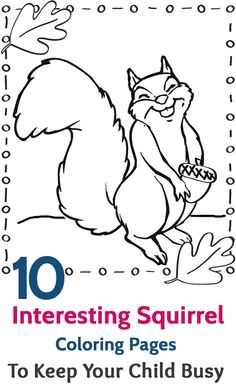 squirrel coloring page squirrel coloring page home flying free printable pages flying squirrel coloring page squirrel coloring page free printable - Squirrel Coloring Pages Printable