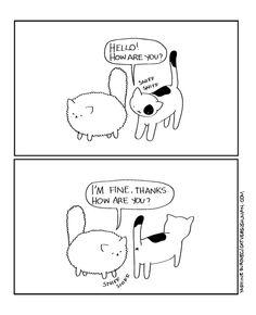 Cats are weird.